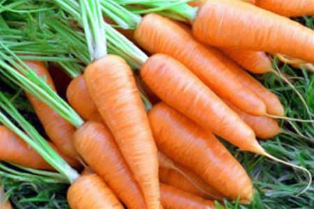 Морковь для масок лица